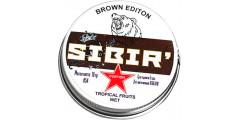 Альтернативы SIBIR